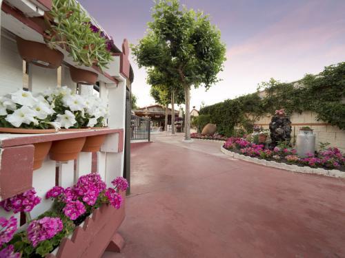 Meson_Casa_Pedro_jardin_018