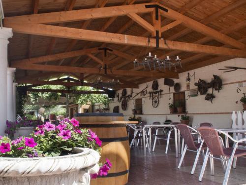 Meson_Casa_Pedro_jardin_021